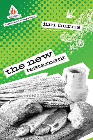 The New Testament: High School Group Study